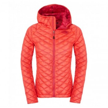 W THERMOBALL HOODED JACKET (CMG6GM)